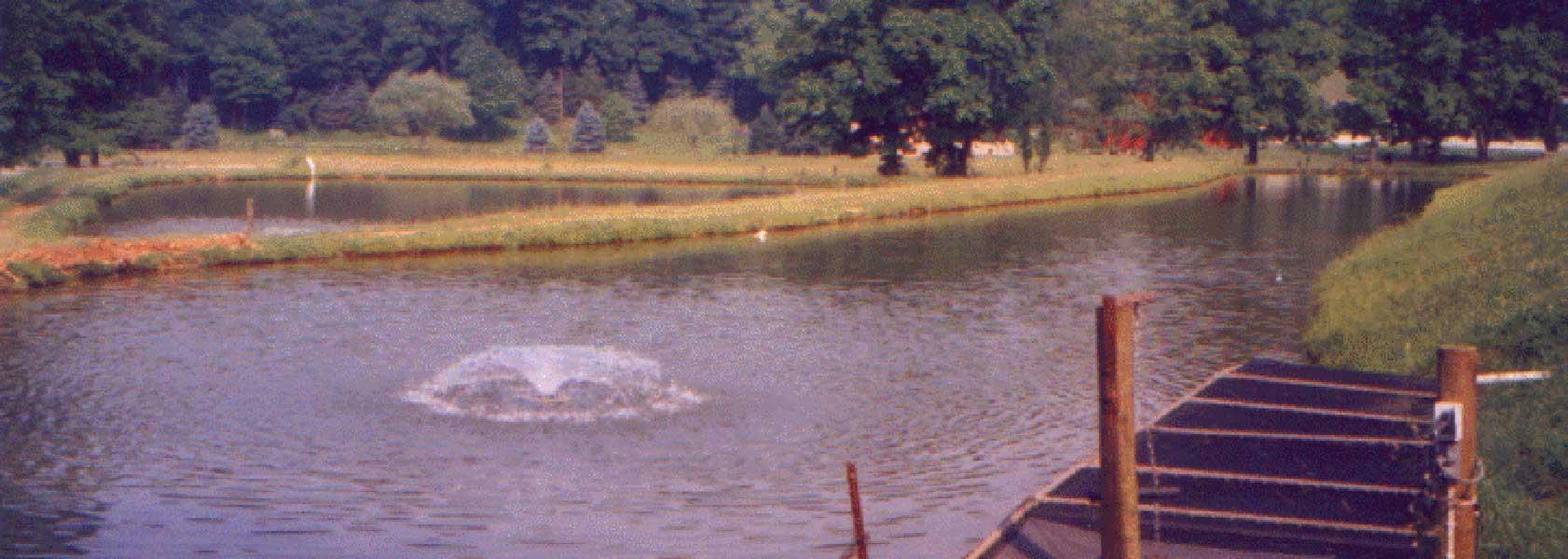 hero-fendersfishfarm-pond1