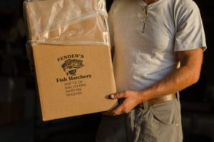 We provide our fish in double bagged boxes with oxygen for you to take home.