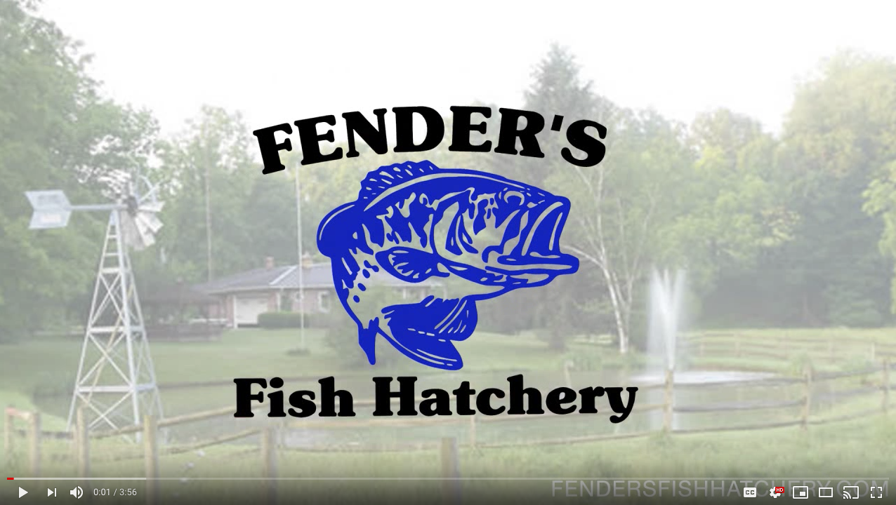 fenders fish hatchery
